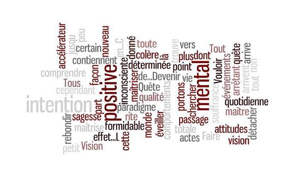 Hypnose Conversationnelle (HC)